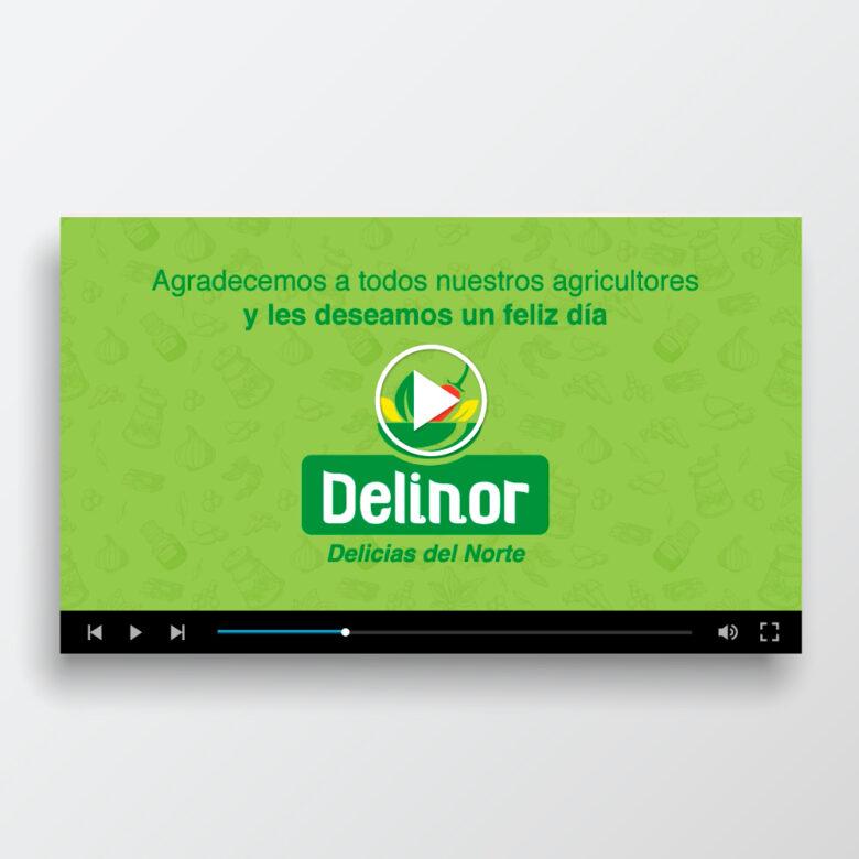 VideoDelinor